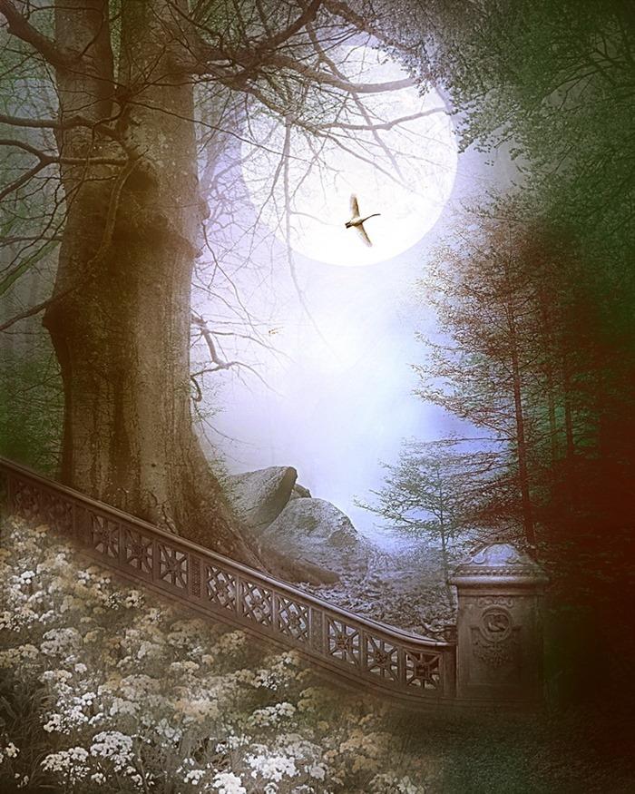 最美自然风景图片