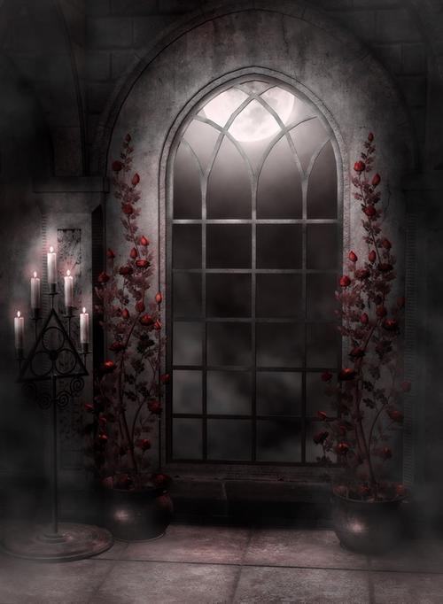 暗黑古堡背景图