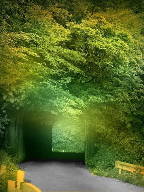 绿林山路清新背景图免抠