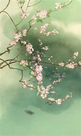 梅花枝头背景图