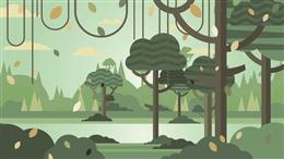 热带雨林背景