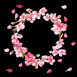 粉色樱花花环