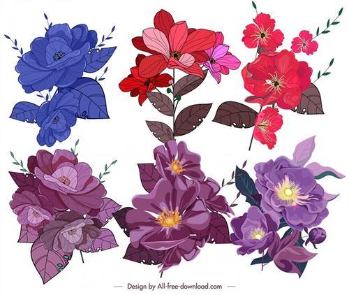 植物花卉插画