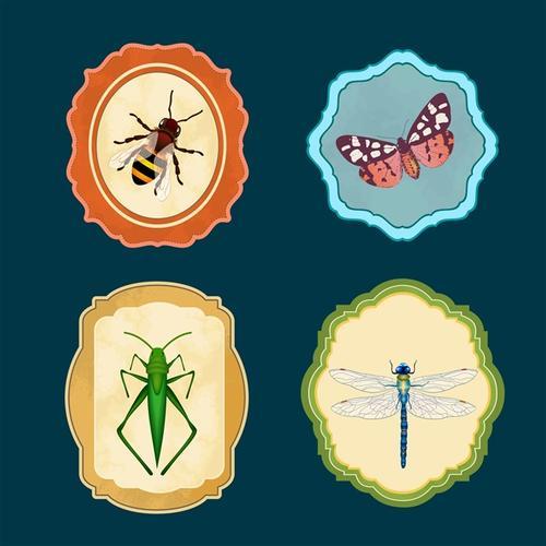 昆虫图标符号