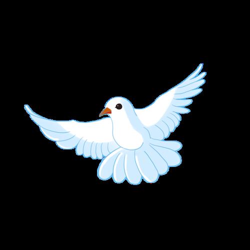 白色飞翔的和平鸽