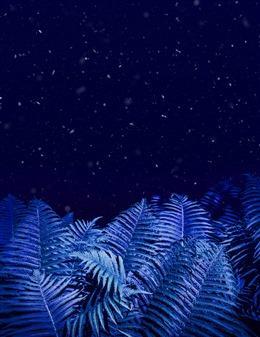 高清简约植物背景图片