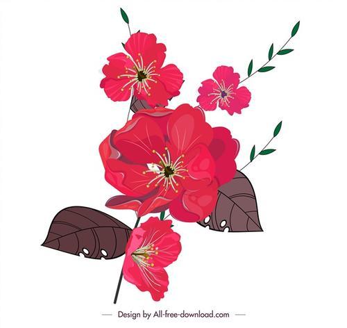 红色芍药插画
