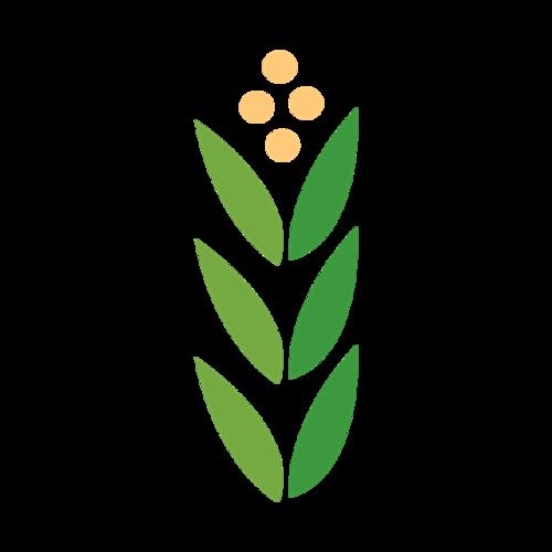 手绘麦穗矢量图