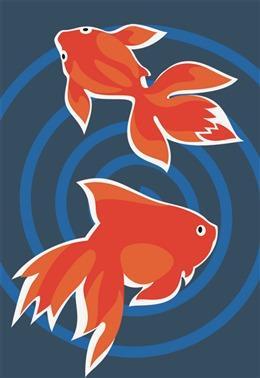 创意金鱼图案
