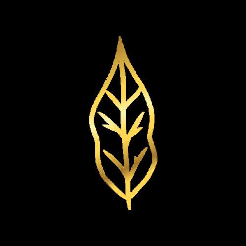 金叶子logo图片