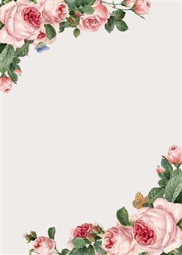 玫瑰花边框背景图