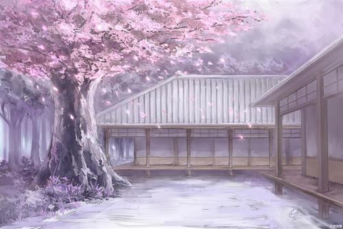 唯美樱花庭院背景