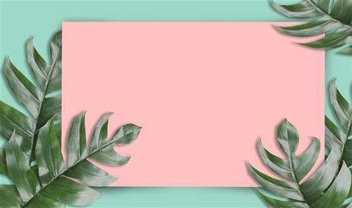 热带绿叶背景