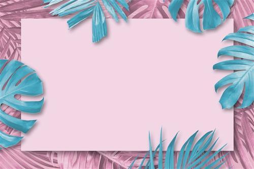 粉色热带植物背景