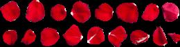 玫瑰花瓣免抠素材图