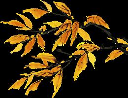 秋天手绘秋季树枝树叶