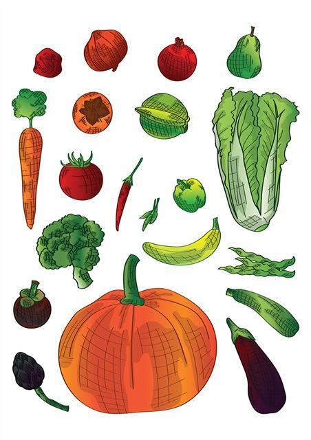各种各样蔬菜水果