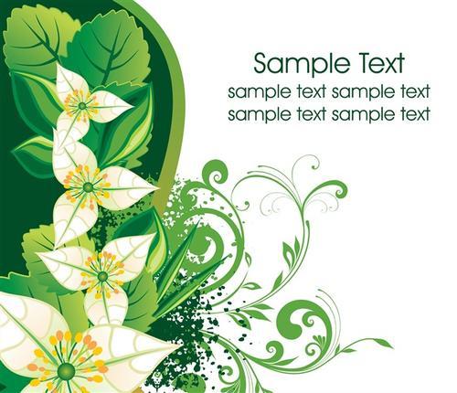 百合花植物封面背景图