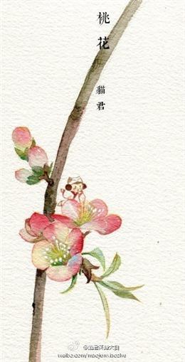 古风手绘桃花背景