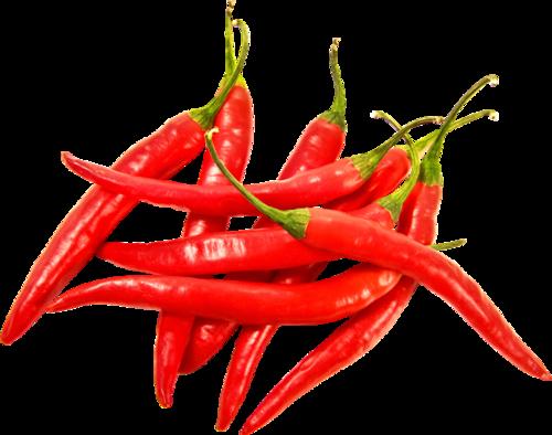 红色小米椒辣椒免抠元素