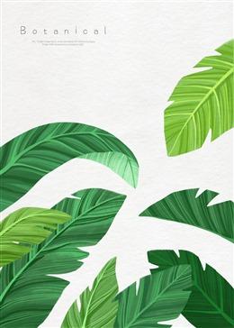 棕榈树叶植物背景