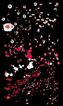 漫天飞舞的花瓣图片