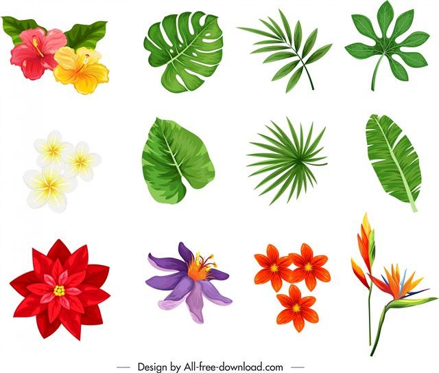 花朵树叶免扣PNG素材
