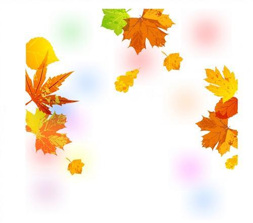 手绘感恩节枫叶装饰图片