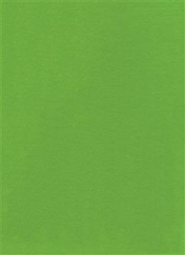 绿色纯色背景