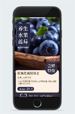养生水果蓝莓海报