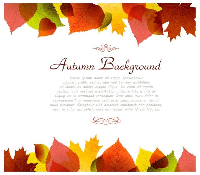 感恩节秋天树叶装饰背景图片