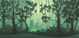 茂盛树林景色风景插画