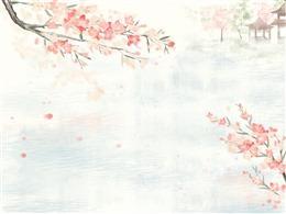 古风手绘花枝背景