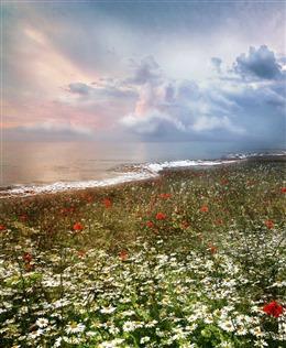 自然花海风景图