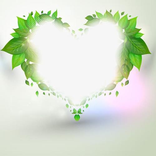 绿色清新枝叶边框