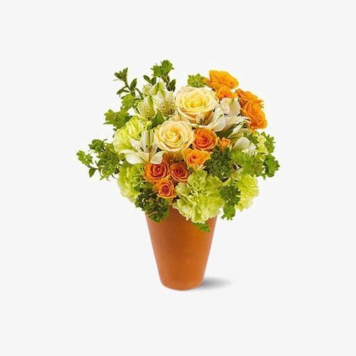 花卉盆栽矢量图