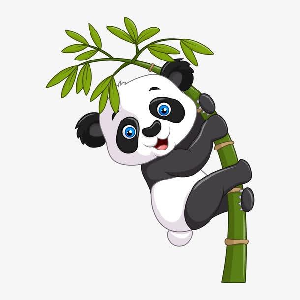 卡通熊猫和竹子图片