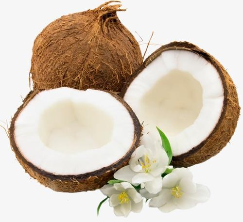 水果椰子实拍图片