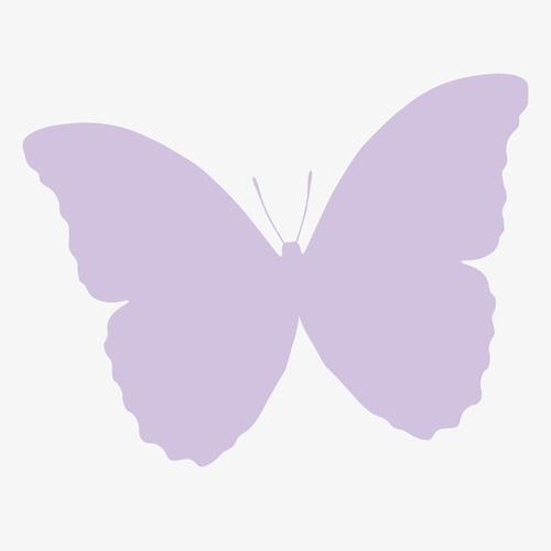 唯美蝴蝶剪影