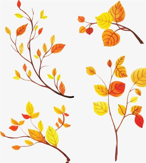 手绘秋天树叶装饰素材