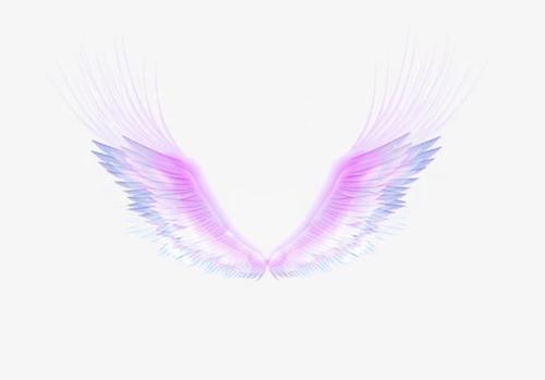 彩色羽毛翅膀