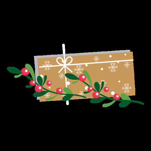 圣诞节礼盒包装