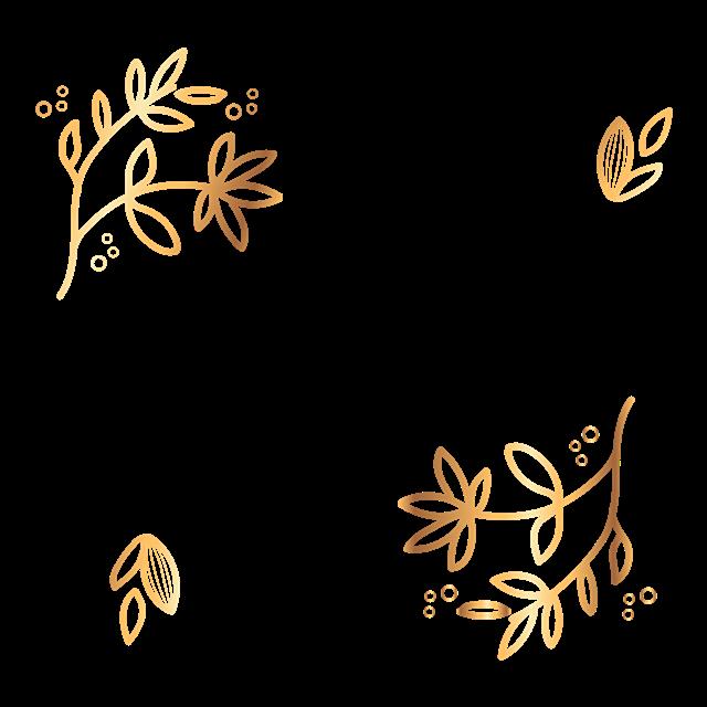 金色叶子花纹边框
