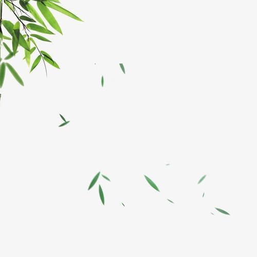 竹叶飘落图片