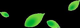 漂浮绿叶矢量图片