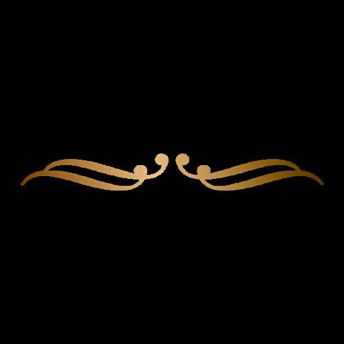 金色线条矢量花纹边框