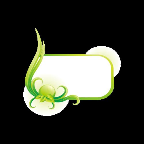 小清新绿色边框