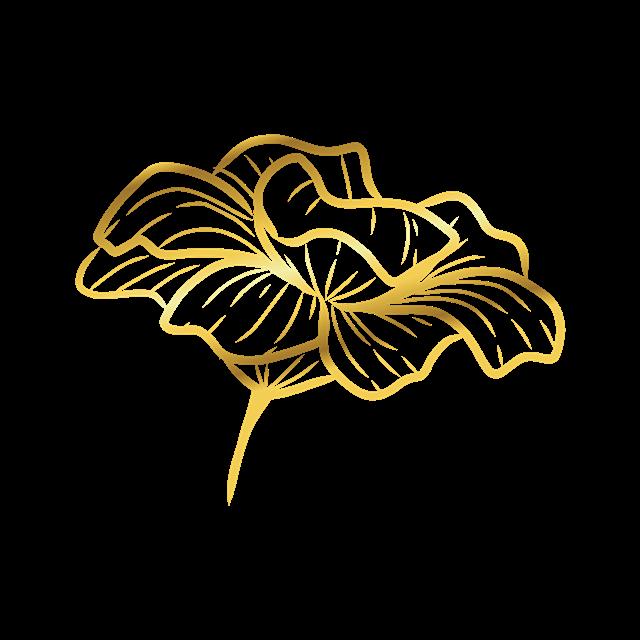 金色线条荷花花纹