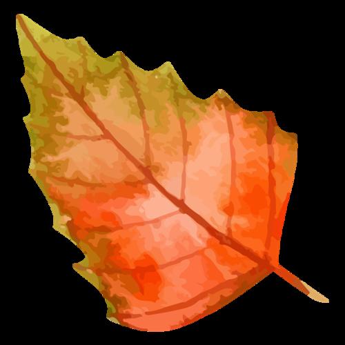 秋天卡通树叶