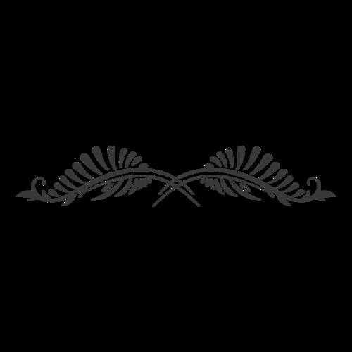 黑色线条花纹装饰
